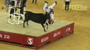 Bull Finishes Guy with Tombstone