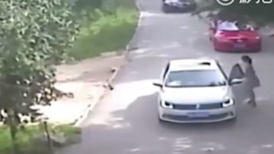 Tiger Kills Woman